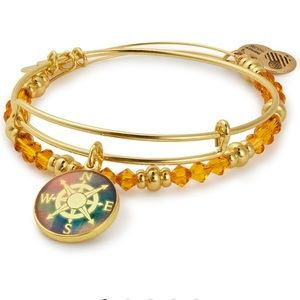 ALEX AND ANI Compass Art Infusion Set